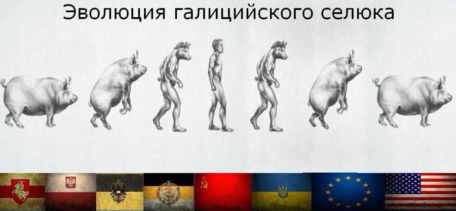 эволюция рагуля