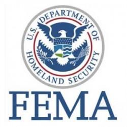 FEMA emblema