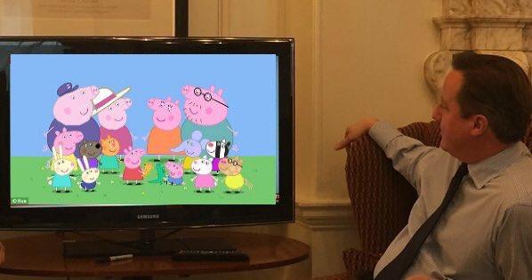 Кэмерон и свиньи