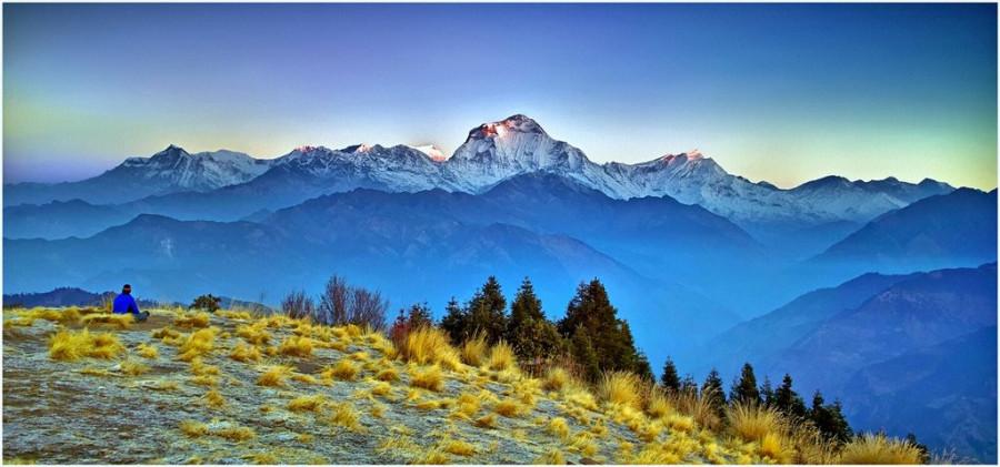 синие горы и жёлтая трава