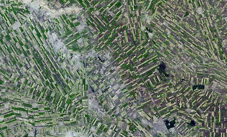 поля в Судане из космоса