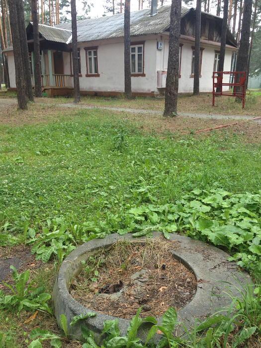 ZENIT033