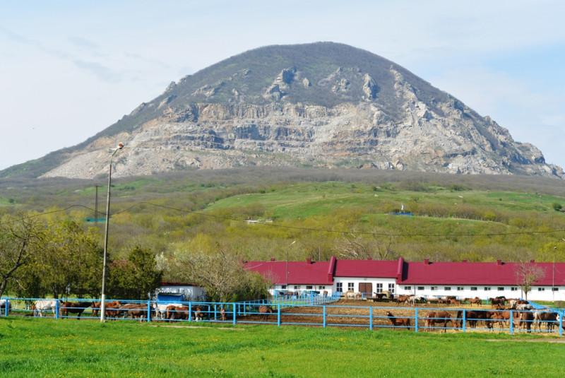 Вид на гору Змейка с территории Терконзавода