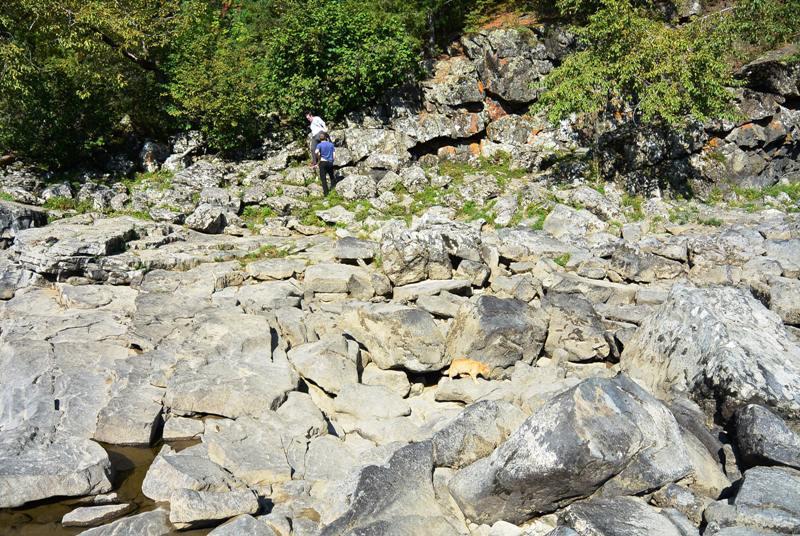 Каменные завалы в русле Казыра (найди кота)