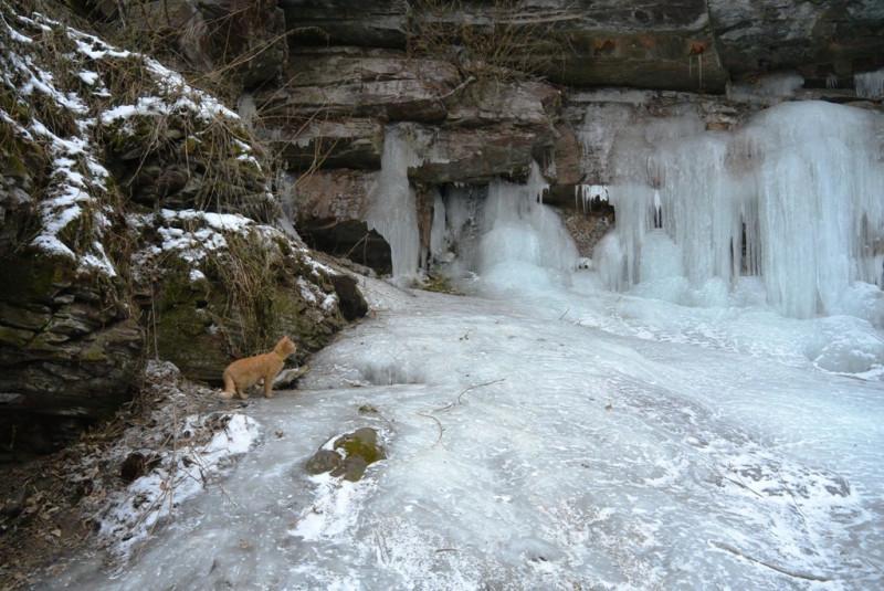 Томик восхищен красотой ледяного водопада и слушает, что внутри тикает