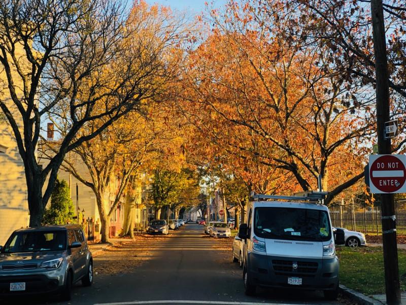 Cambridge_fall_2019 - 13.jpg