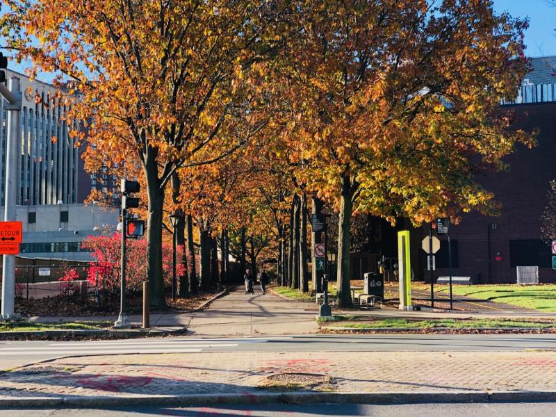 Cambridge_fall_2019 - 10.jpg