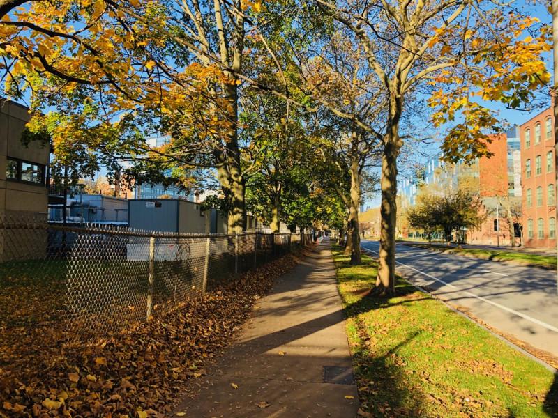 Cambridge_fall_2019 - 9.jpg
