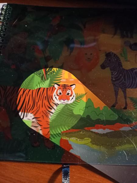РазПознавательная книга про зверей с волшебным фонариком и секретными страницами IMG20210913083157.jpg