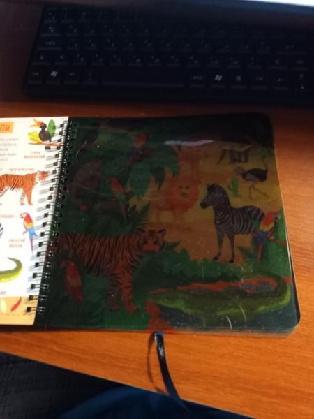 РазПознавательная книга про зверей с волшебным фонариком и секретными страницами IMG20210913083139.jpg