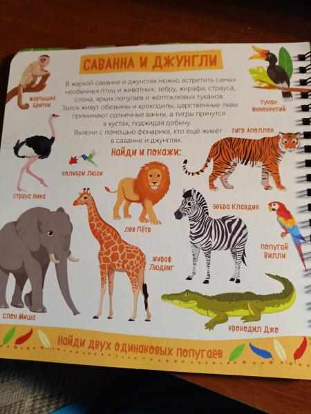 РазПознавательная книга про зверей с волшебным фонариком и секретными страницами IMG20210913083026.jpg