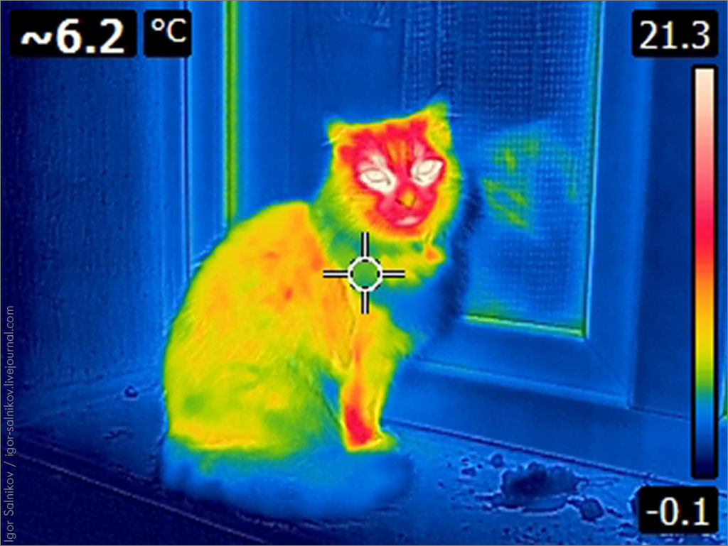 котофото тепловизор инфракрасный Теплоцель