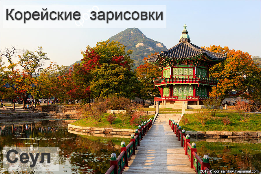 20121013_0270_t