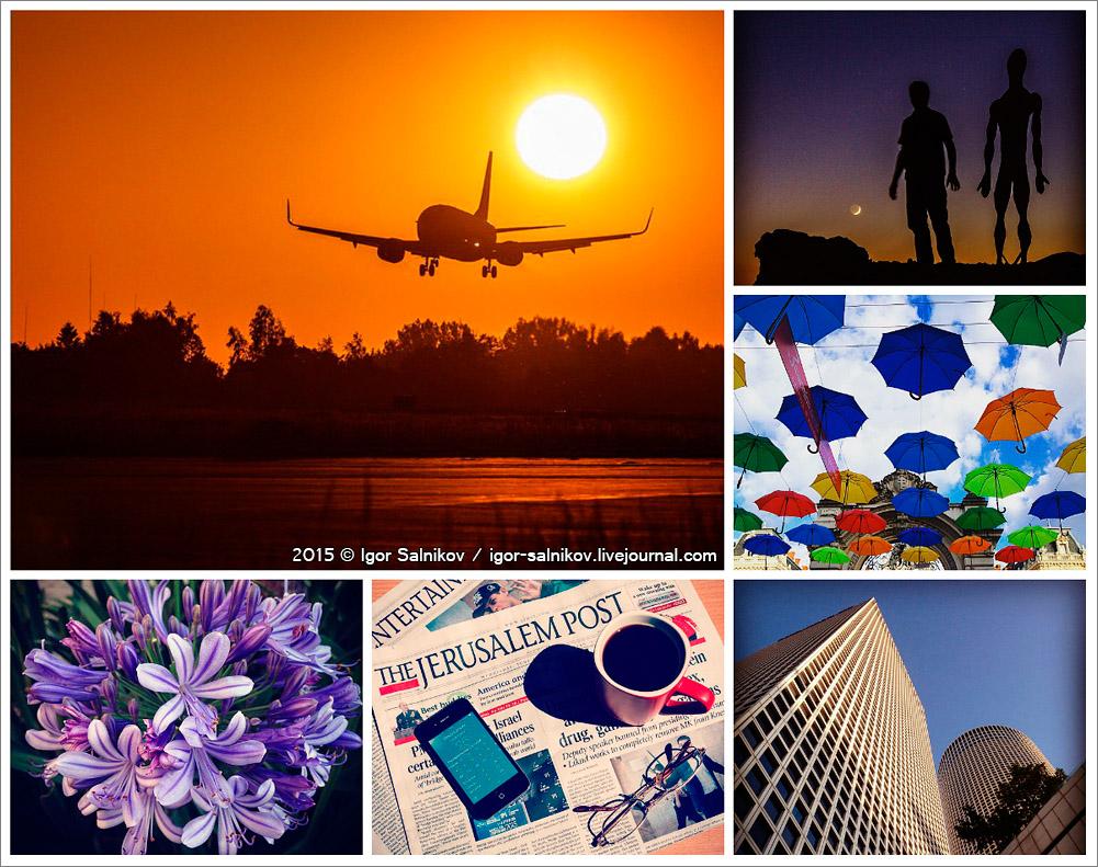 collage0620015.jpg