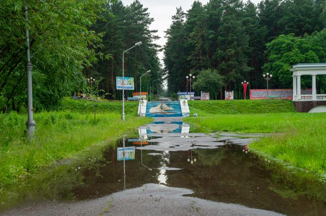 Эту дорожку в парк всегда заливает, после каждого хорошего дождя. Пройдем по перевернутому миру?