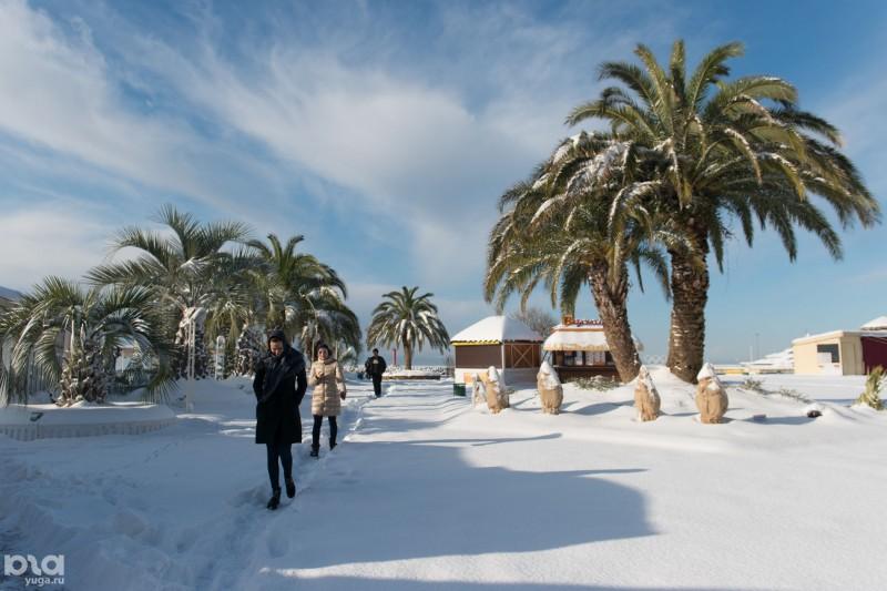 snow-sohi_b12__6bpqjhb
