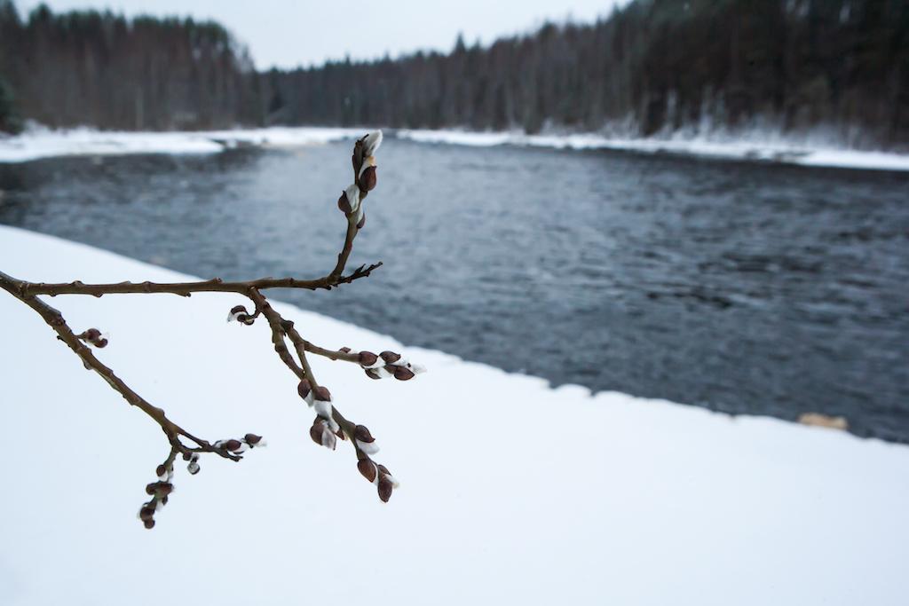Картинки зима встречается с весной