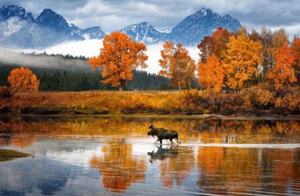 fotokonkurs-National-Geographic-16-39-990x648