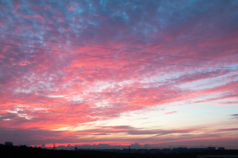 зелёному языку как сделать розовое небо на фото ароматную пышную выпечку