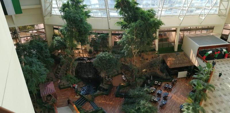 Вид на зимний сад и вход в отель