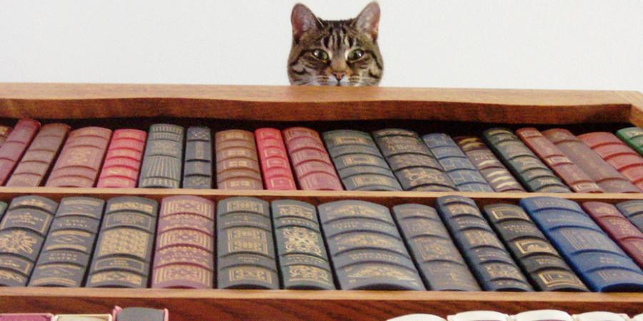 Топ-лучших-книг
