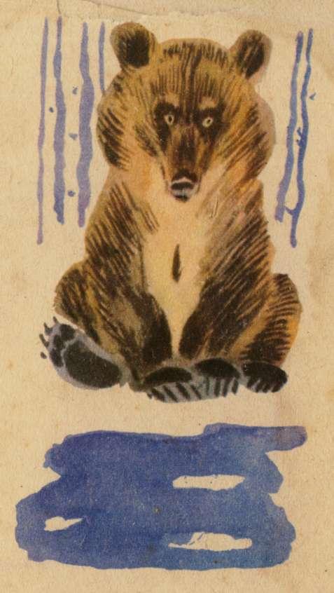 medved-prosnulsya-stihotvorenie