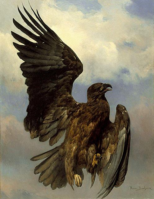 Роза Бонер Раненый орел
