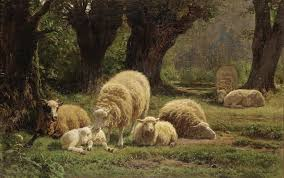 Джульетт Бонер Отдыхающие овцы