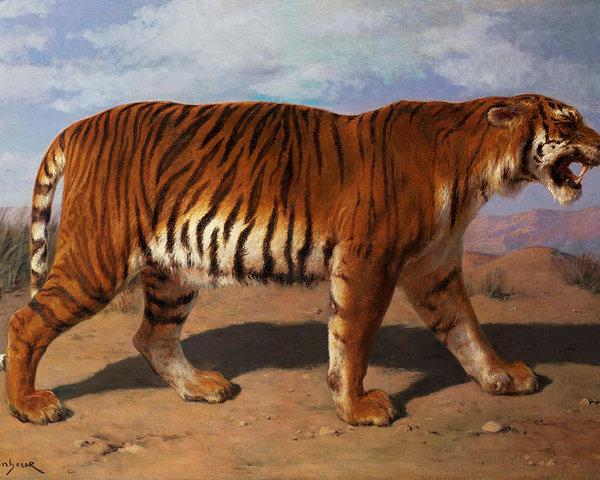 Роза Бонер Тигр