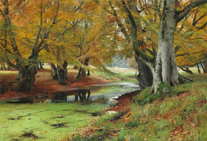 Осень в Dyrehaven (Оленьем саду) с выпасом оленей