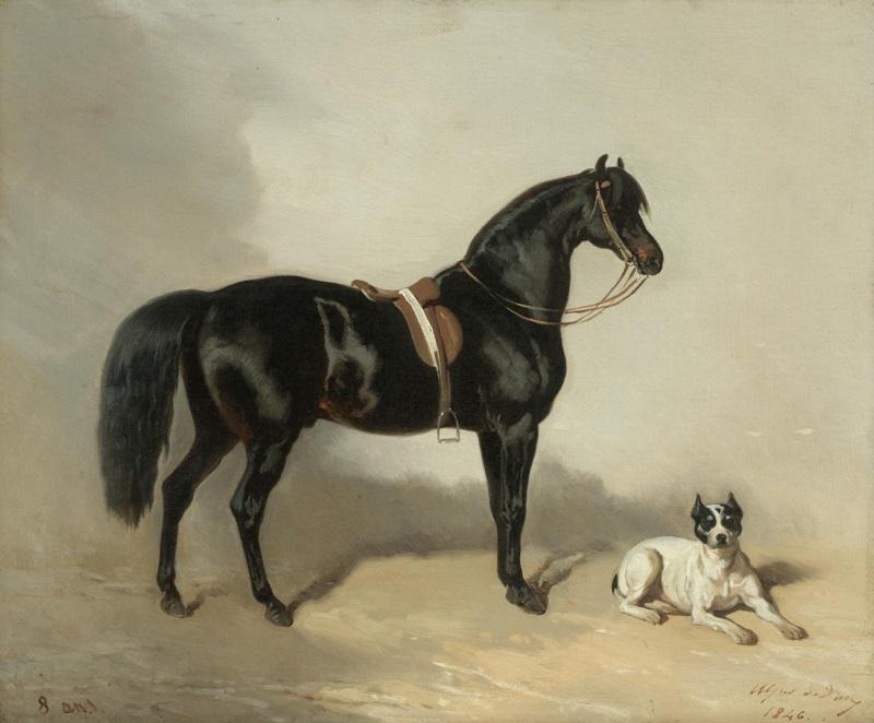 Арабская лошадь и бульдог