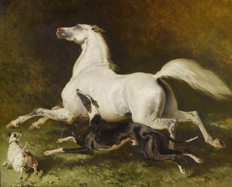 Белая лошадь, галлопирующая с двумя собаками