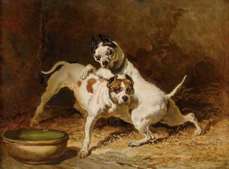 Две играющие собаки