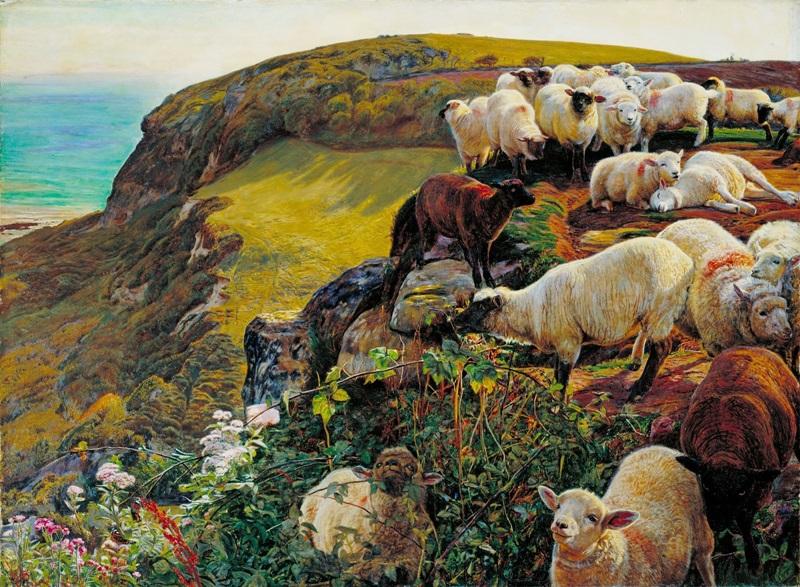 Наше английское побережье (Заблудшие овцы)