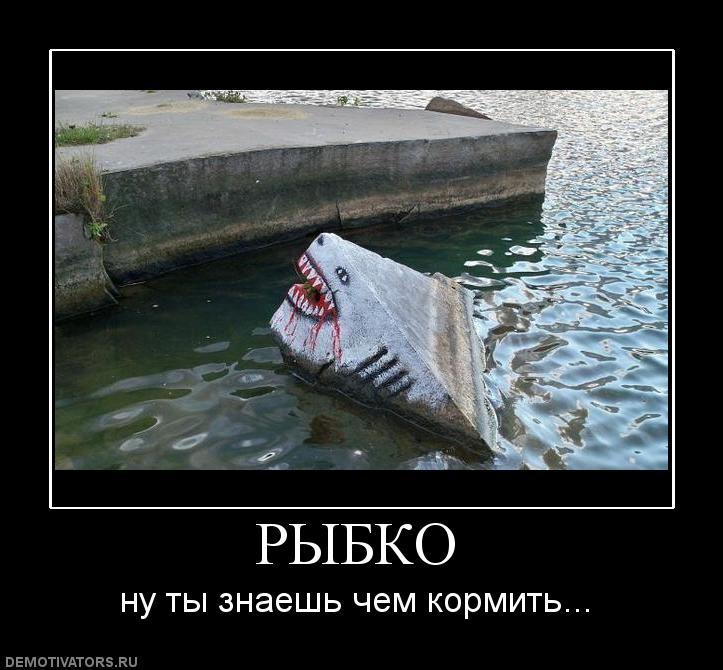 Главное не попасть на рыбалку, главное с нее вернуться!