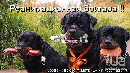 К вам сегодня не приходили?)))