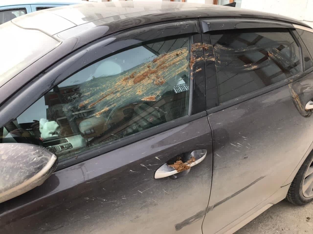 Дикари в России: пометили машину — чем, чем?! — им самым