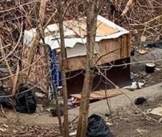 Управа, полиция и Мосприрода выгнали людей и кошек на улицу.