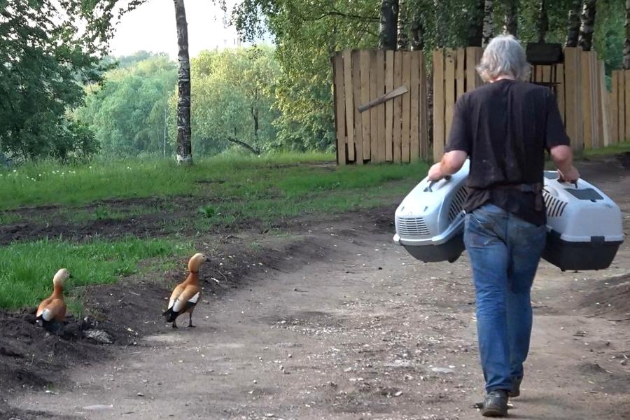 Бригада по принудительному отъему детей у родителей заработала в Москве.