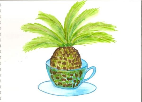 Пальма в чашке