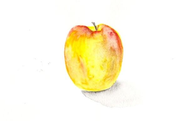 Яблоко 20 05