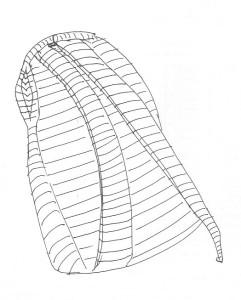 Полосатый рюкзак