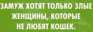 1429533794_-5yz8hgehdc