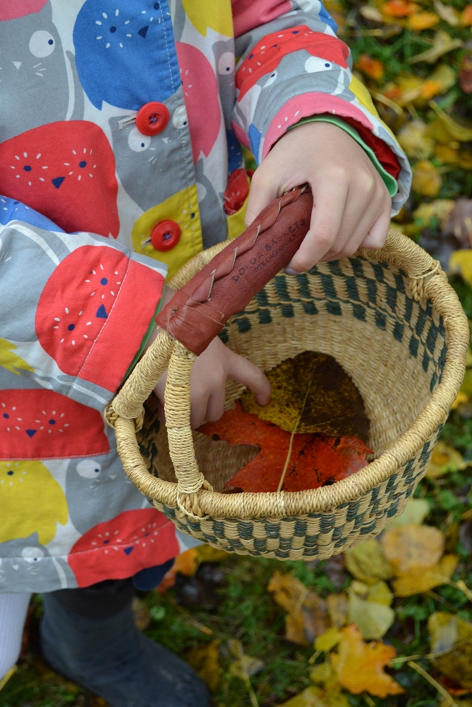Leaf Collecting 1