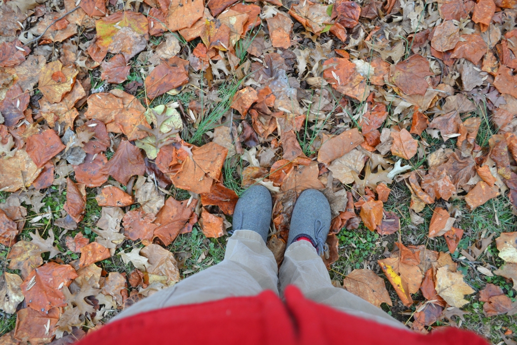 Feet in the Leaves