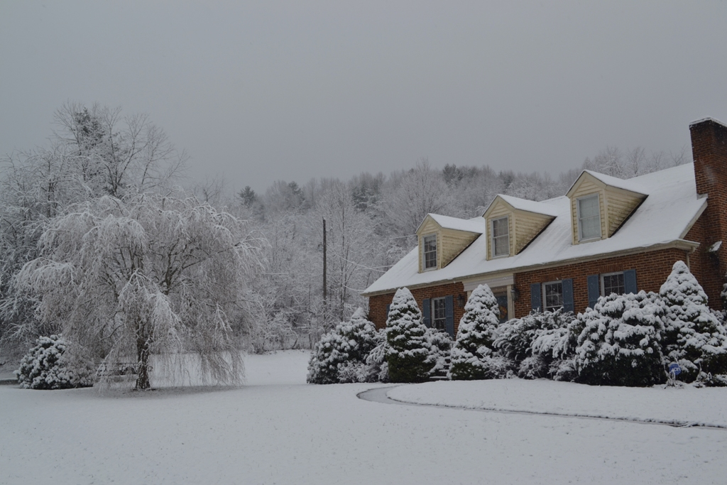 Snowy Homeplace