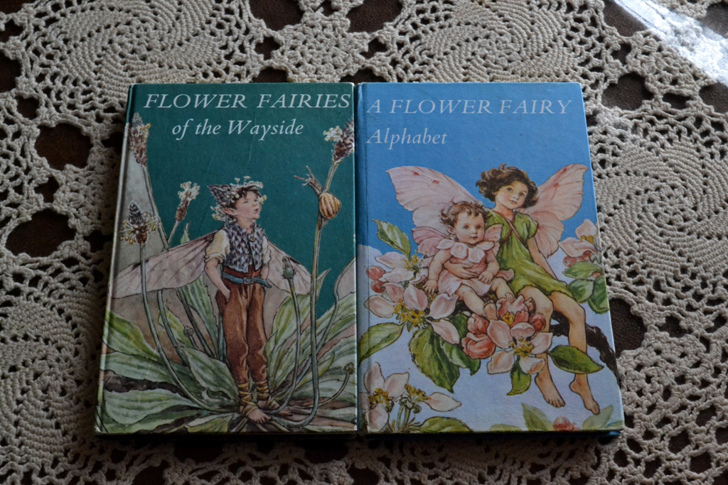 Flower Fairies!