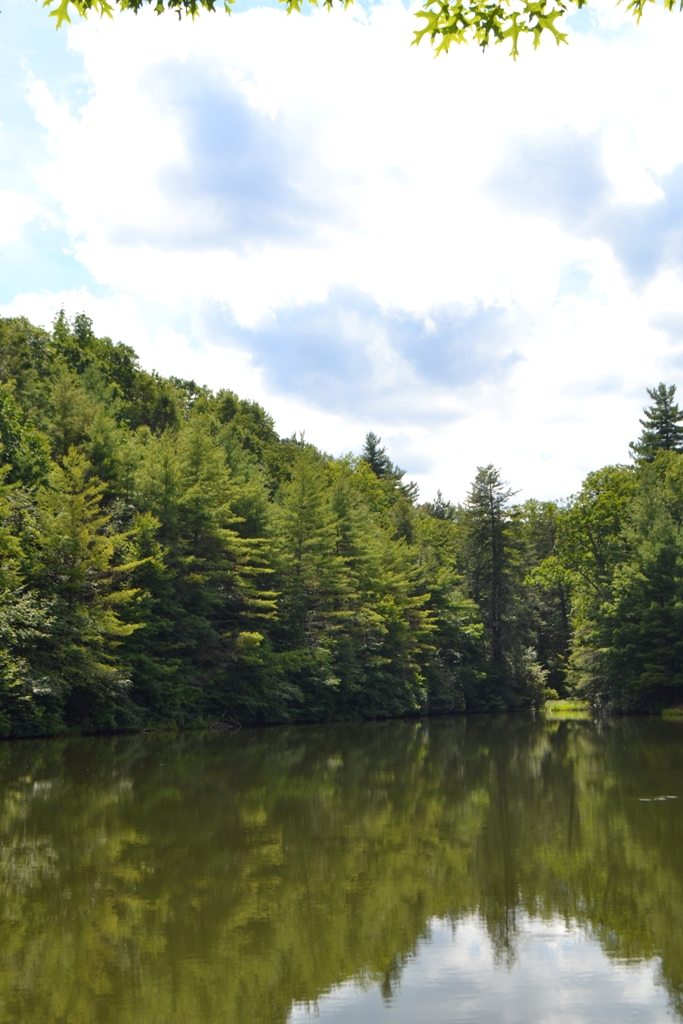 Hale Lake