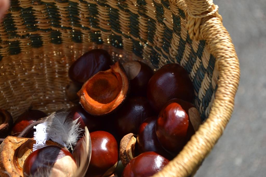 Basket of Nuts