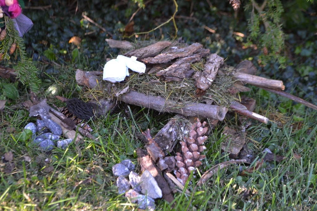 Willow's Fairy House